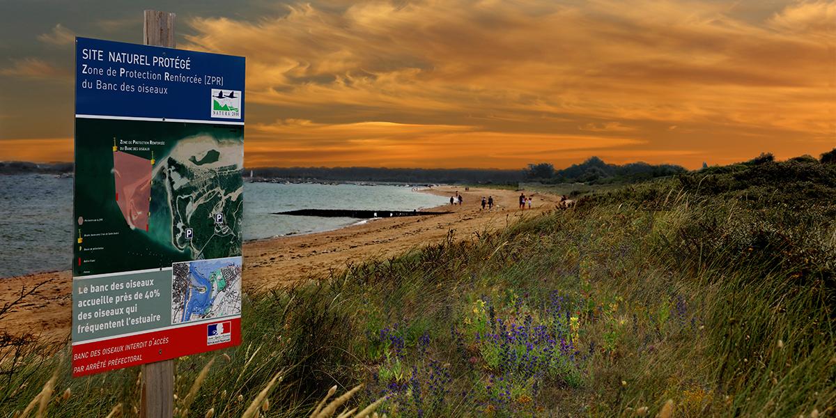 Nature et plage de sable